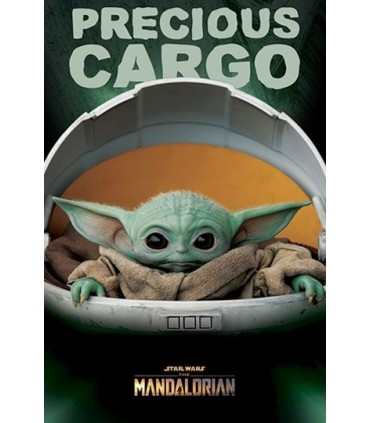 Poster Star Wars The Mandalorian Precious Cargo