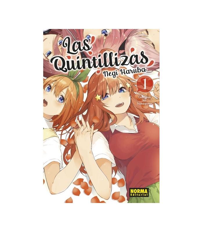 LAS QUINTILLIZAS 1