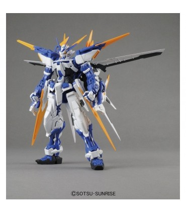 GUNDAM ASTRAY BLUE FRAME D MG 1/100